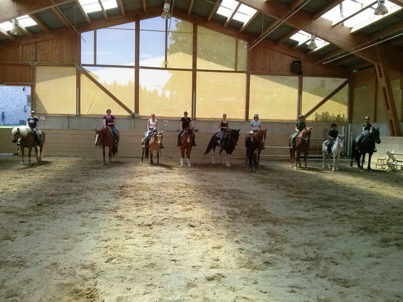 Bettina hoflehner mobiles pferdetraining for Verena hoflehner